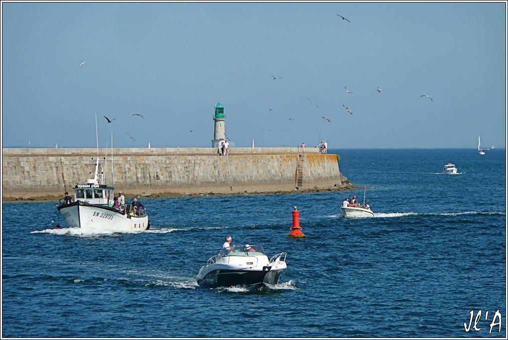 [Activité hors Marine des ports] LE CROISIC Port, Traict, Côte Sauvage... - Page 4 G02%20retour%20de%20p%C3%AAche%20Toison%20d%27Or%20TZ313399
