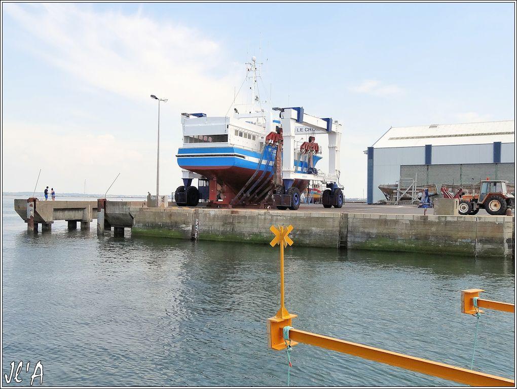 [Activité hors Marine des ports] LE CROISIC Port, Traict, Côte Sauvage... - Page 4 N-16%20Myosotis%20%20sous%20le%20portique%20S20V02547%20chalutier%20de%20l%27%C3%AEle%20d%27Yeu