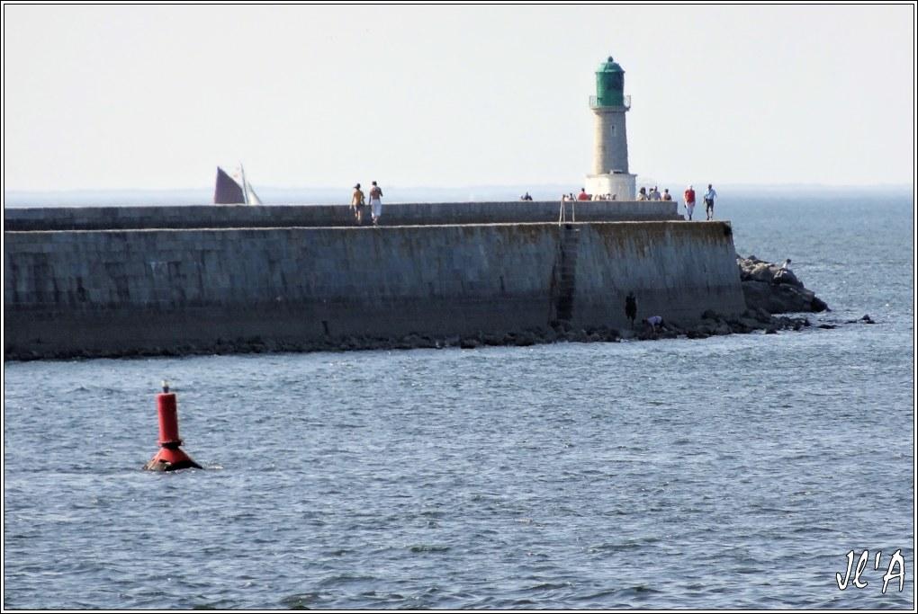 [Activité hors Marine des ports] LE CROISIC Port, Traict, Côte Sauvage... - Page 5 Q34-33%20Kurun%20derri%C3%A8re%20la%20jet%C3%A9e%20du%20Tr%C3%A9hic%20S20V03970