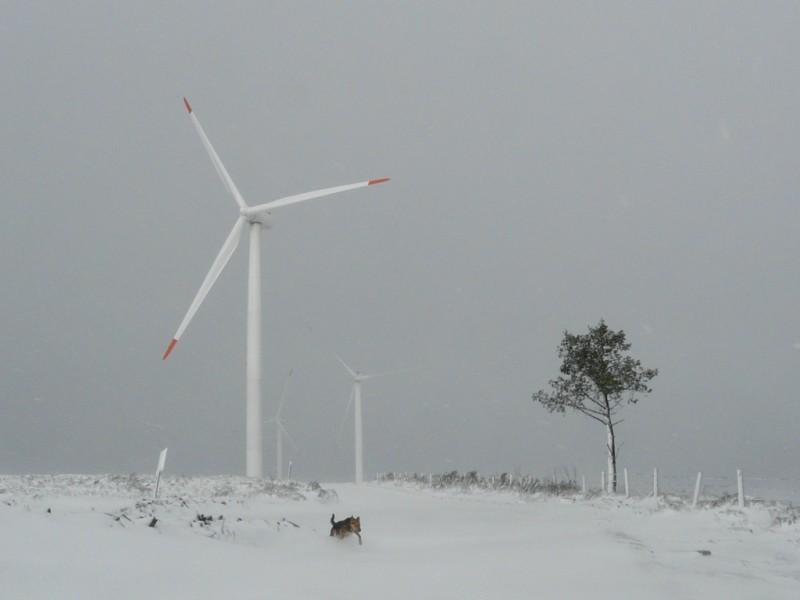 (Portugal) Construction du parc éolien du Sabugal - Page 4 P1120309.JPG