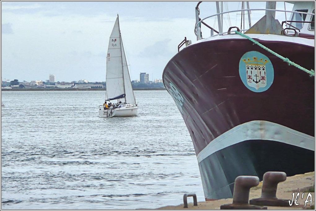 [Activité hors Marine des ports] LE CROISIC Port, Traict, Côte Sauvage... - Page 4 I20%20entr%C3%A9e%20au%20port%20du%20voilier%20Djinn7%20TZ3113934