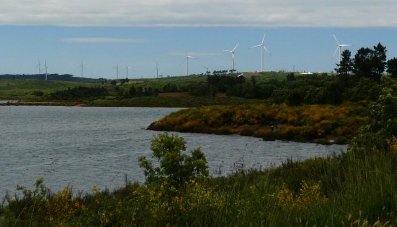 Quelques photos d'éoliennes au Portugal 0806080022.JPG