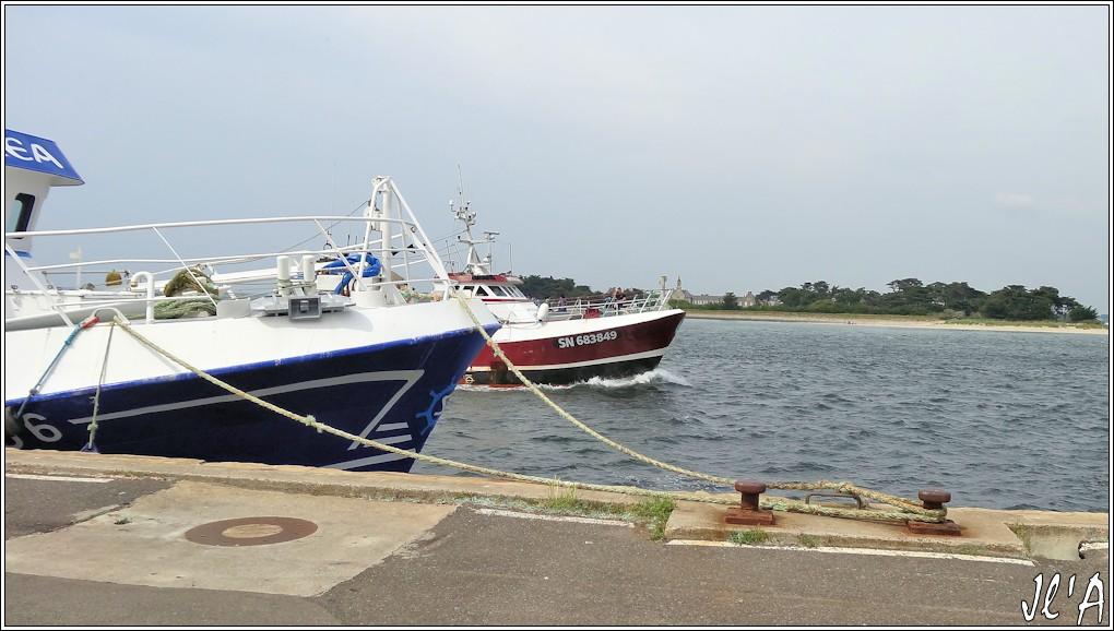 [Activité hors Marine des ports] LE CROISIC Port, Traict, Côte Sauvage... - Page 5 N86-a46%20Matmaco%20retour%20de%20p%C3%AAche%20S20V02619