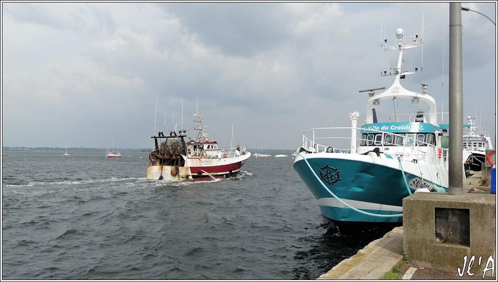 [Activité hors Marine des ports] LE CROISIC Port, Traict, Côte Sauvage... - Page 5 N87-a47%20Matmaco%20retour%20de%20p%C3%AAche%20S20V02620