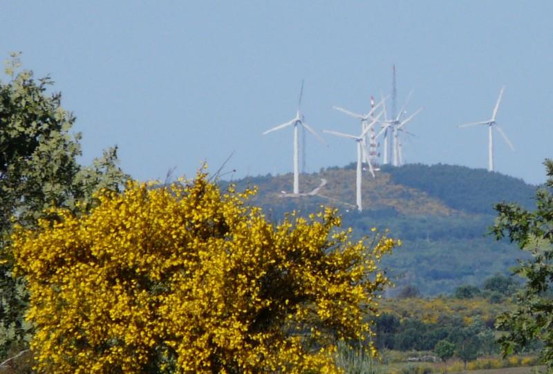 Quelques photos d'éoliennes au Portugal 0806080002.JPG