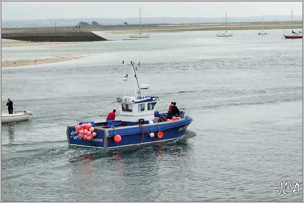 [Activité hors Marine des ports] LE CROISIC Port, Traict, Côte Sauvage... - Page 5 P37-06%20retour%20de%20p%C3%AAche%20ligneur%20Nicolas%20Lauryne%20S20V03693