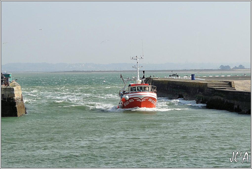 [Activité hors Marine des ports] LE CROISIC Port, Traict, Côte Sauvage... - Page 4 K37-60%20Marika%20entre%20au%20port%20S20V02132