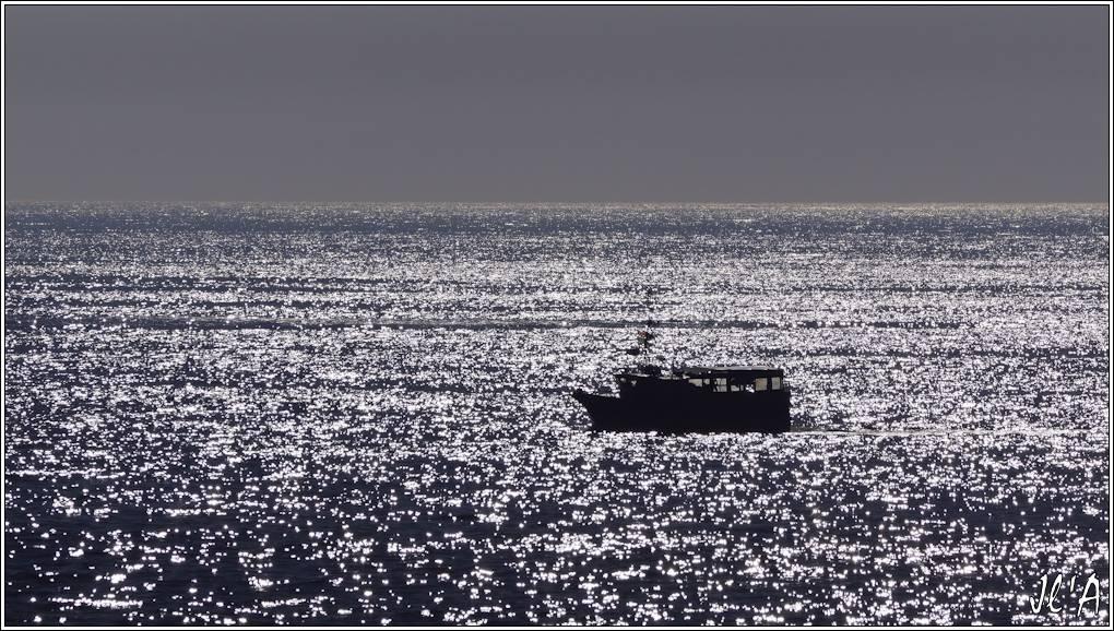 [Activité hors Marine des ports] LE CROISIC Port, Traict, Côte Sauvage... - Page 6 R62-08-80%20Storm%202%20en%20contre-jour%20_A00507
