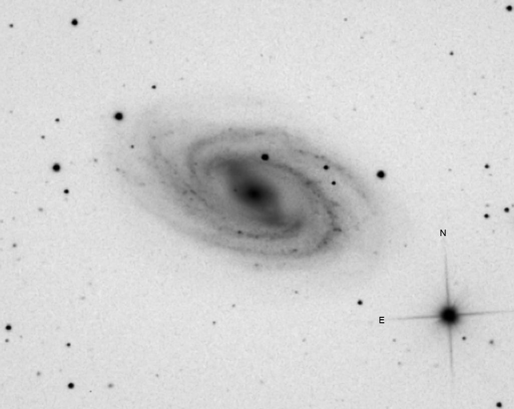Ciel profond d'hiver - Page 10 M101_neg