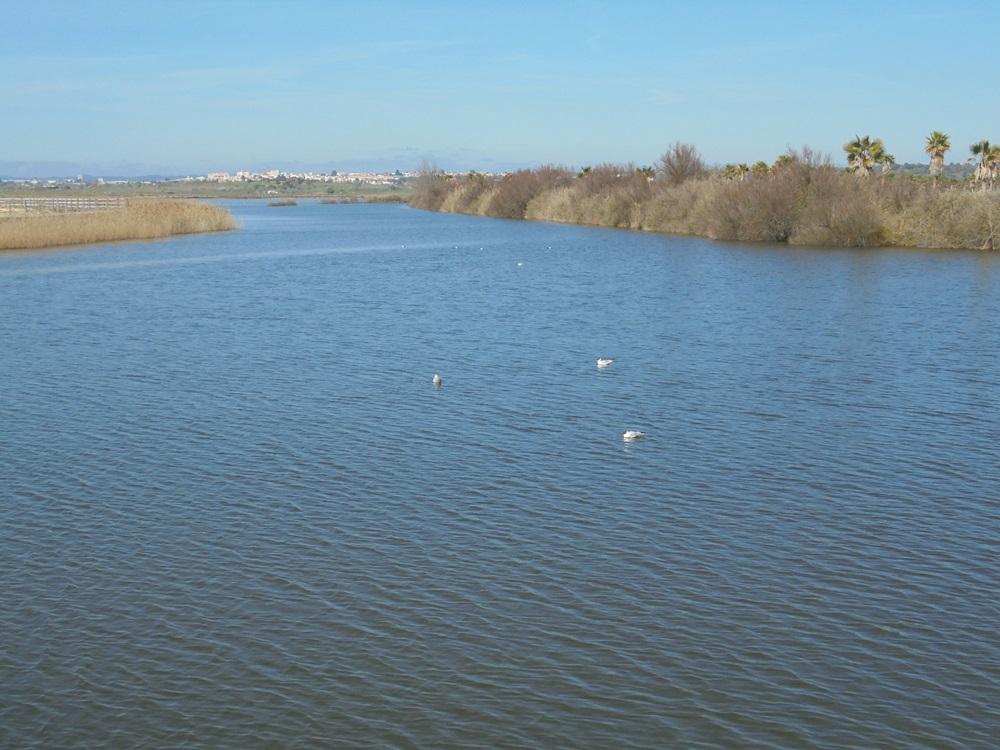 Salgados Lagoon 3rd March 2015