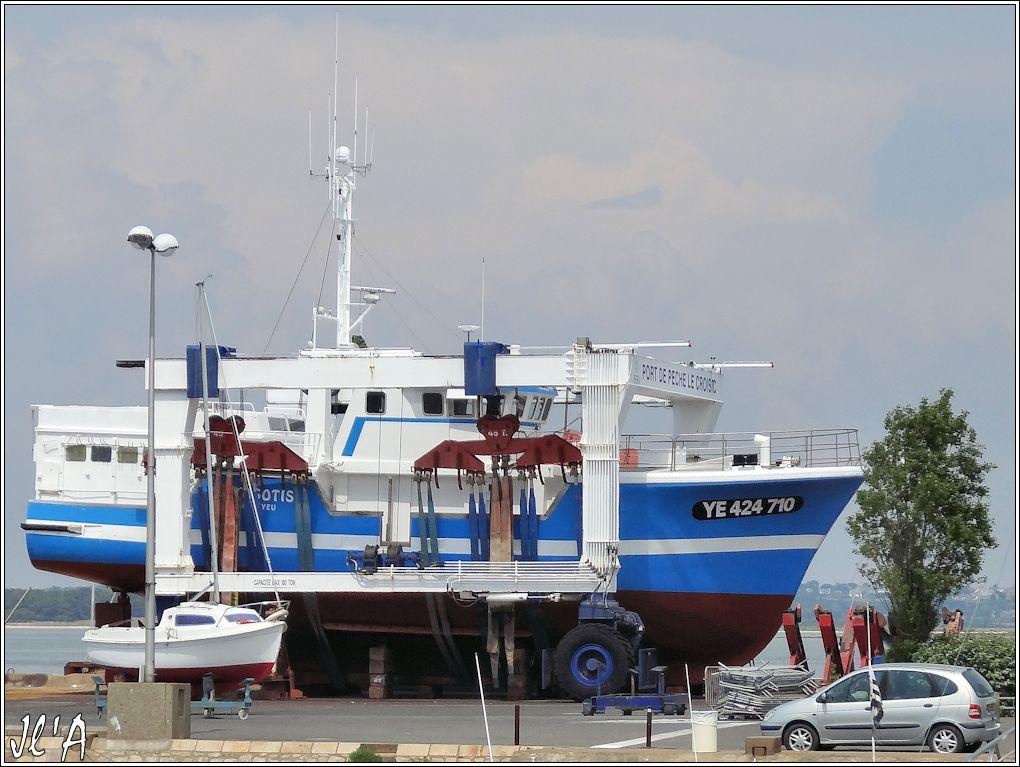 [Activité hors Marine des ports] LE CROISIC Port, Traict, Côte Sauvage... - Page 4 N-15%20Myosotis%20%20sous%20le%20portique%20S20V02546%20chalutier%20de%20l%27%C3%AEle%20d%27Yeu