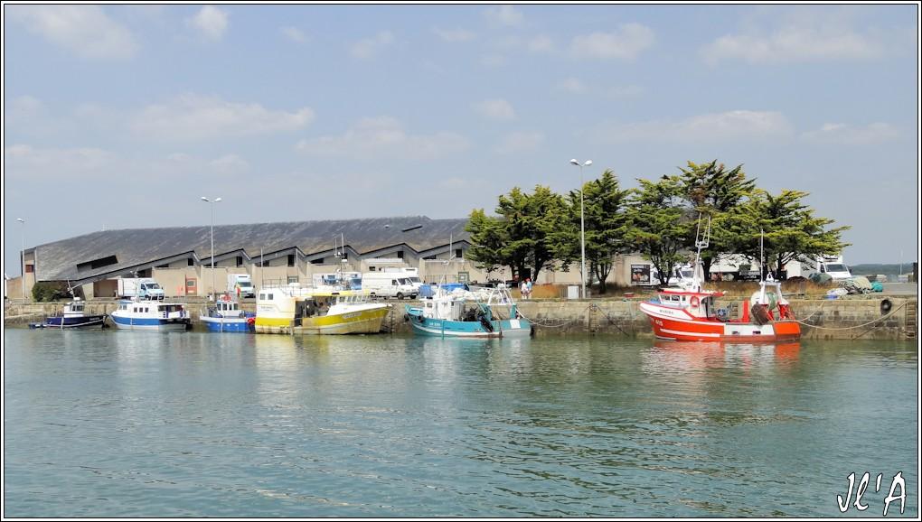 [Activité hors Marine des ports] LE CROISIC Port, Traict, Côte Sauvage... - Page 5 P73-49%20quai%20du%20port%20de%20p%C3%AAche%20S20V03781