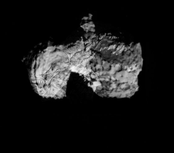 L'actualité de Rosetta - Page 2 Ripley_reviens