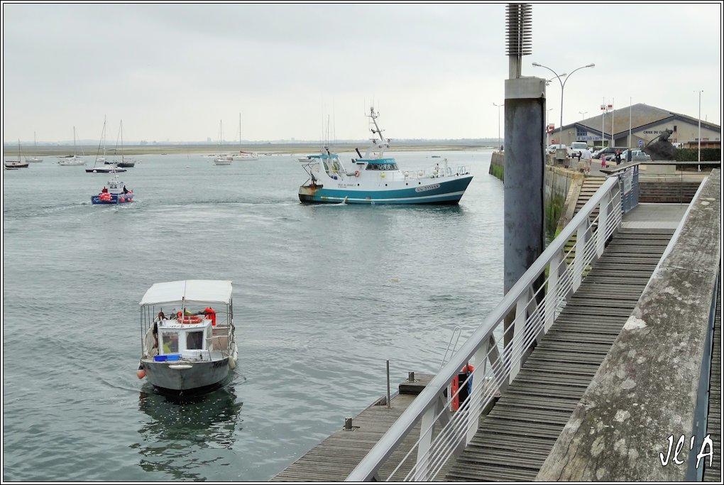 [Activité hors Marine des ports] LE CROISIC Port, Traict, Côte Sauvage... - Page 5 P42-08%20Ville%20du%20Croisic%20V%20et%20Navette%20La%20Galipetante%20S20V03695