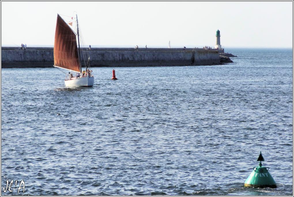 [Activité hors Marine des ports] LE CROISIC Port, Traict, Côte Sauvage... - Page 5 Q39-42%20Kurun%20entre%20au%20port%20sous%20grande%20voile%20S20V03985